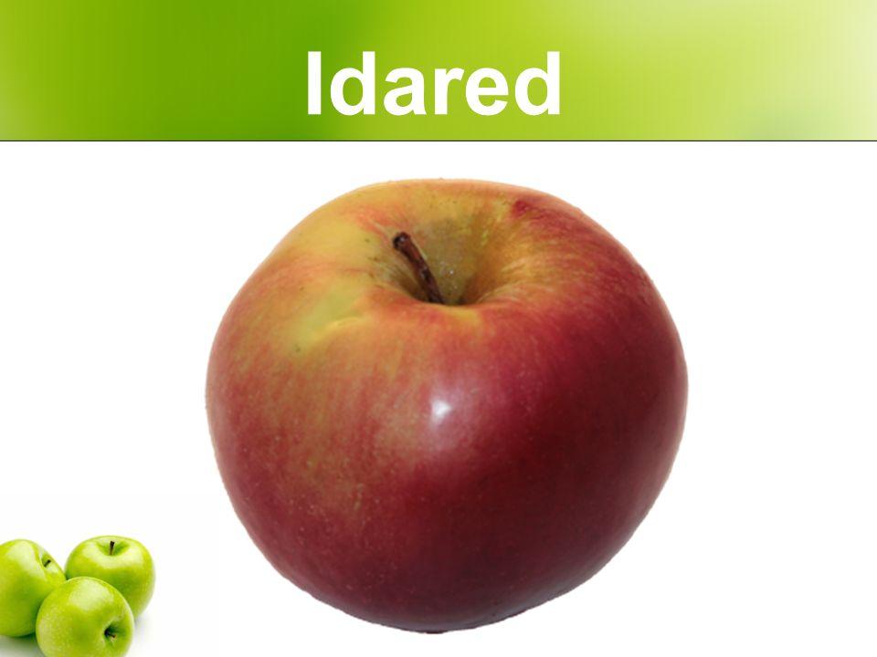 Idared