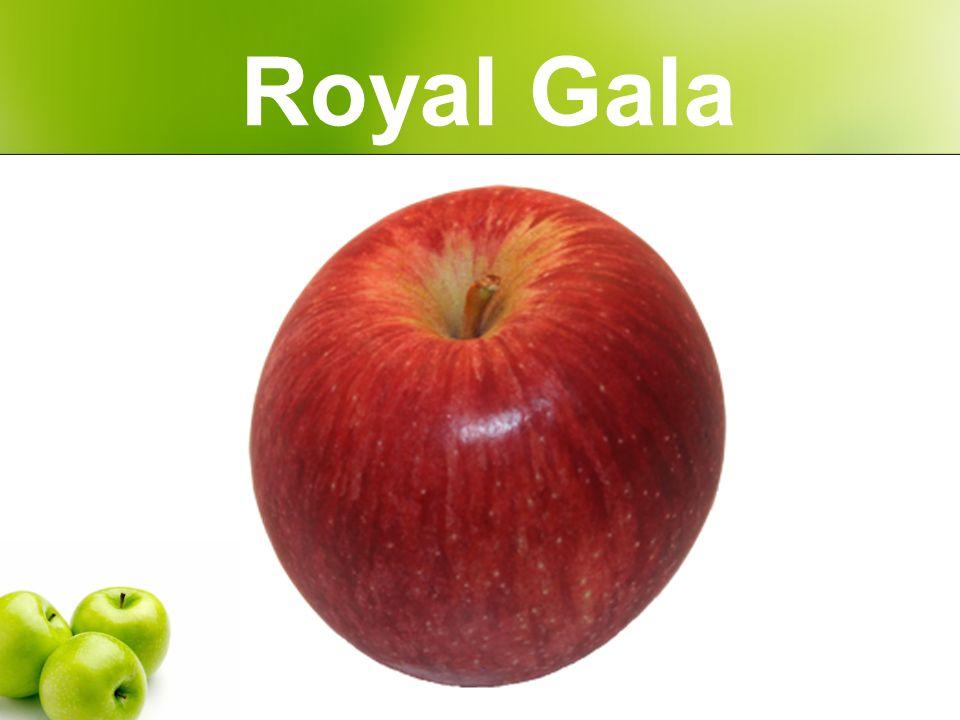 Royal Gala