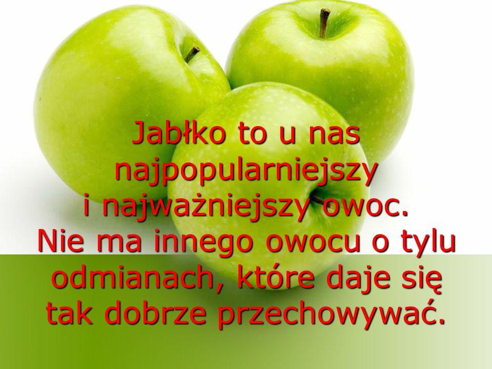 Jabłko to u nas najpopularniejszy i najważniejszy owoc.