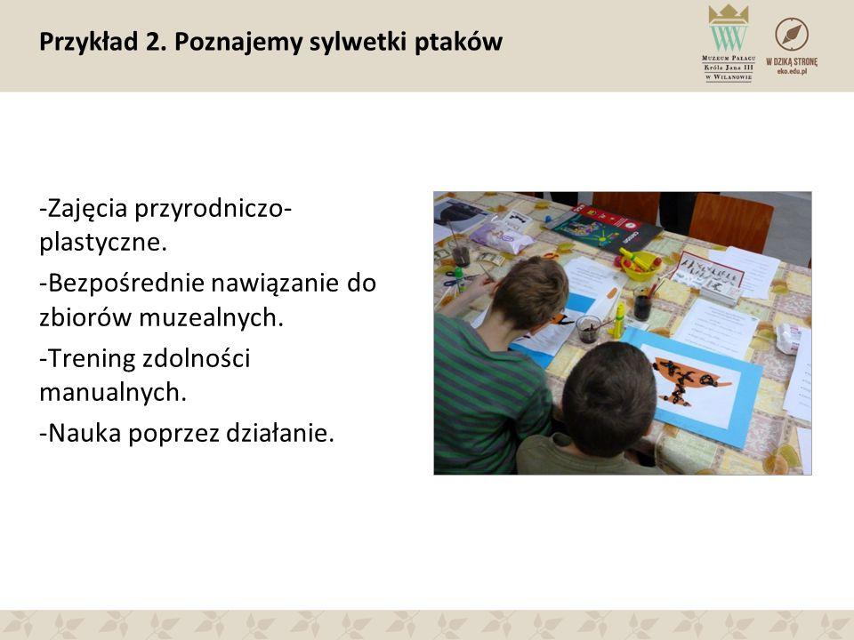 Przykład 2. Poznajemy sylwetki ptaków -Zajęcia przyrodniczo- plastyczne. -Bezpośrednie nawiązanie do zbiorów muzealnych. -Trening zdolności manualnych