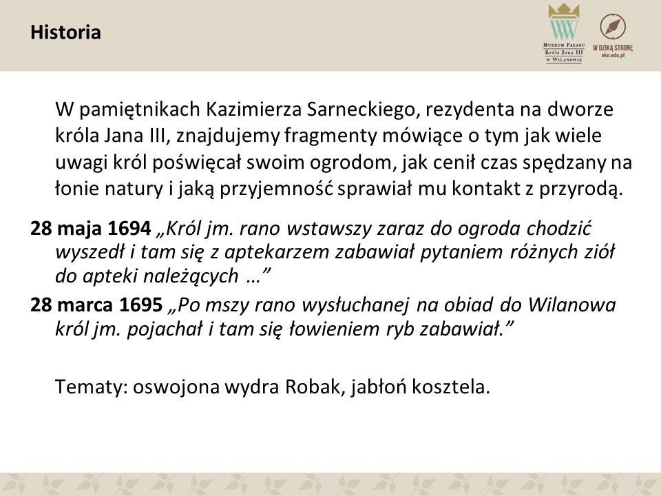 Historia W pamiętnikach Kazimierza Sarneckiego, rezydenta na dworze króla Jana III, znajdujemy fragmenty mówiące o tym jak wiele uwagi król poświęcał swoim ogrodom, jak cenił czas spędzany na łonie natury i jaką przyjemność sprawiał mu kontakt z przyrodą.
