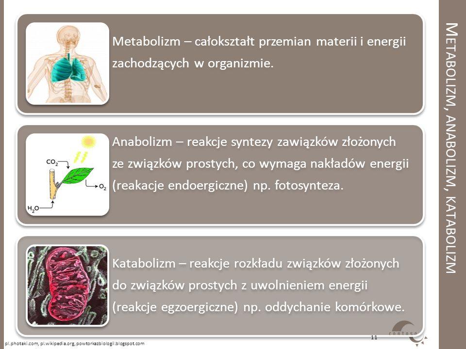 M ETABOLIZM, ANABOLIZM, KATABOLIZM Metabolizm – całokształt przemian materii i energii zachodzących w organizmie. Anabolizm – reakcje syntezy zawiązkó