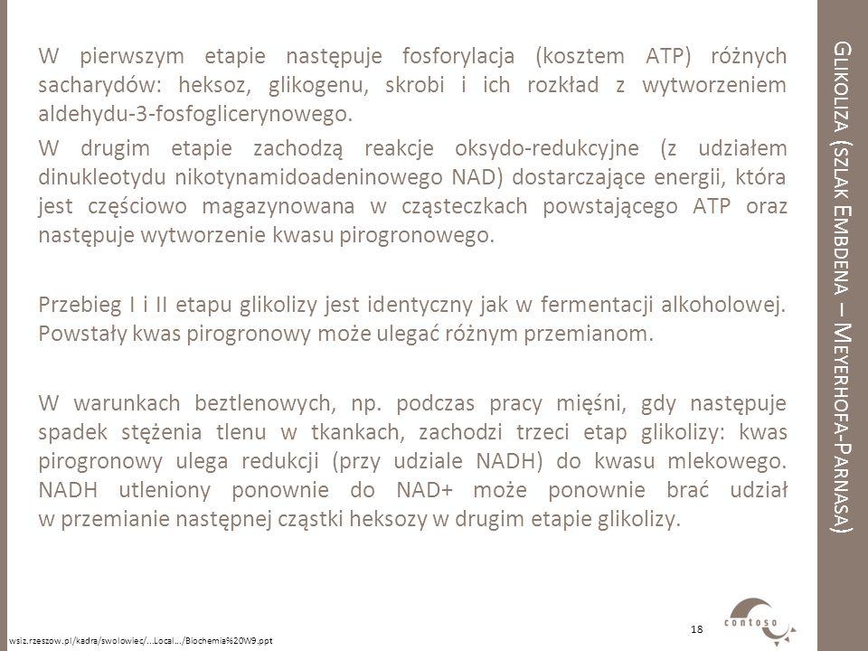 G LIKOLIZA ( SZLAK E MBDENA – M EYERHOFA -P ARNASA ) W pierwszym etapie następuje fosforylacja (kosztem ATP) różnych sacharydów: heksoz, glikogenu, sk