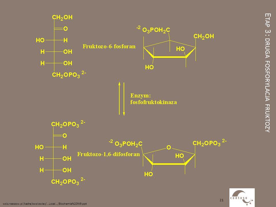 E TAP 3: DRUGA FOSFORYLACJA FRUKTOZY wsiz.rzeszow.pl/kadra/swolowiec/...Local.../Biochemia%20W9.ppt 21