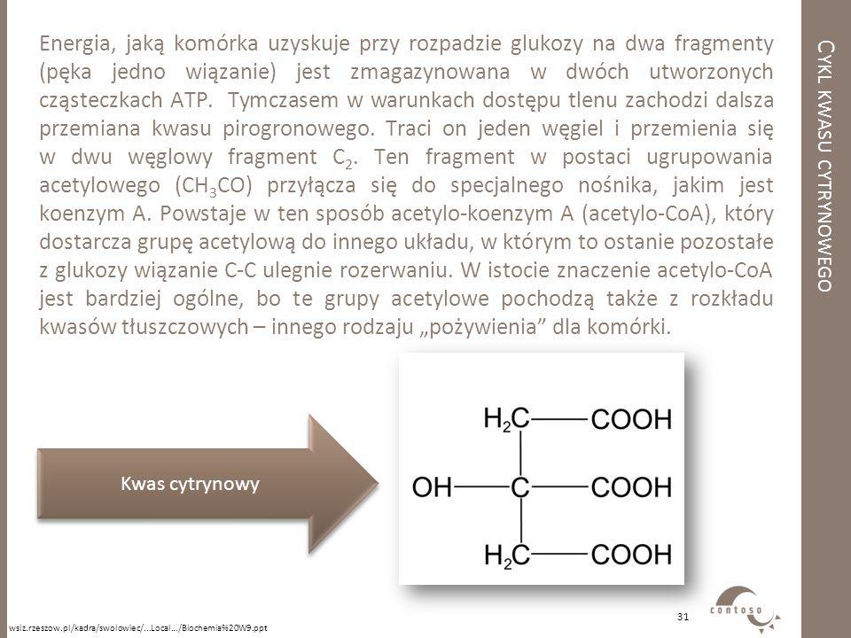 C YKL KWASU CYTRYNOWEGO Energia, jaką komórka uzyskuje przy rozpadzie glukozy na dwa fragmenty (pęka jedno wiązanie) jest zmagazynowana w dwóch utworz