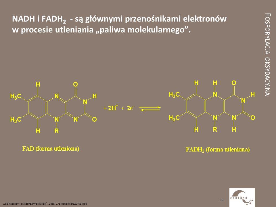 """F OSFORYLACJA OKSYDACYJNA NADH i FADH 2 - są głównymi przenośnikami elektronów w procesie utleniania """"paliwa molekularnego"""". wsiz.rzeszow.pl/kadra/swo"""