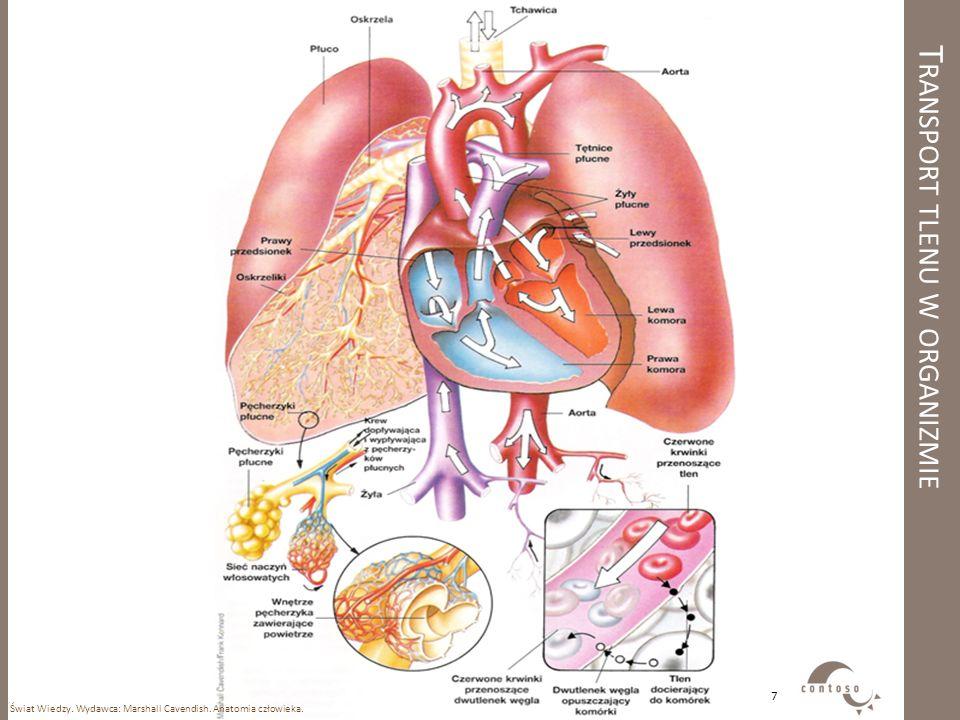 T RANSPORT TLENU W ORGANIZMIE Świat Wiedzy. Wydawca: Marshall Cavendish. Anatomia człowieka. 7