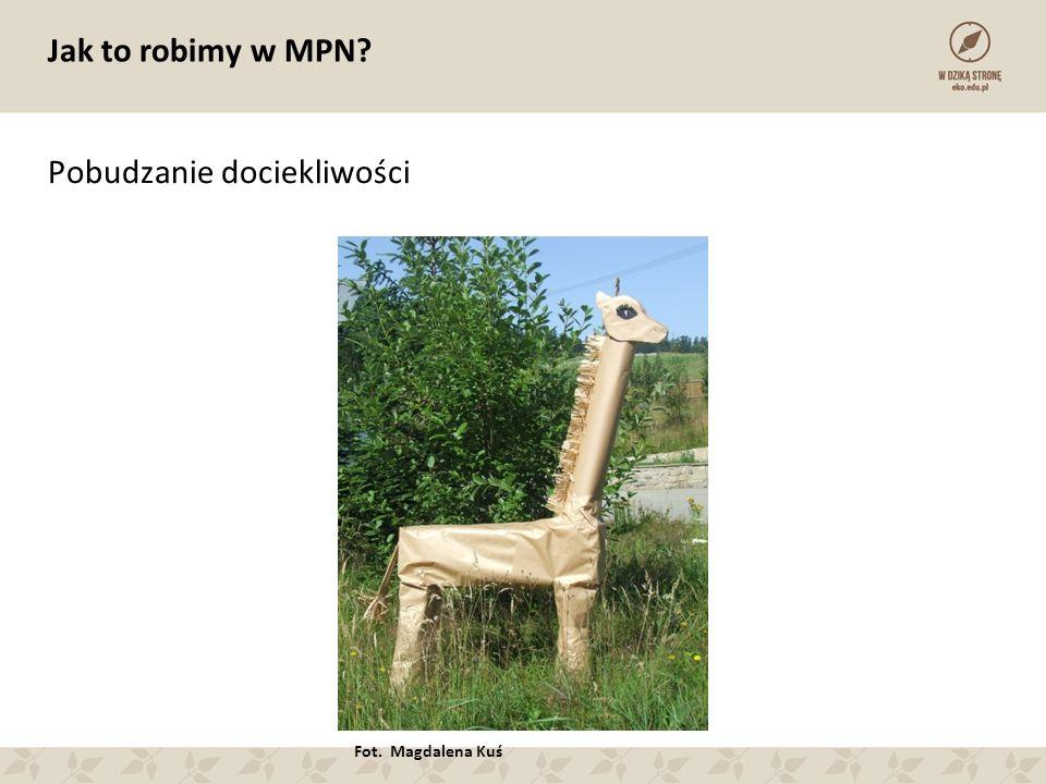 Jak to robimy w MPN Pobudzanie dociekliwości Fot. Magdalena Kuś