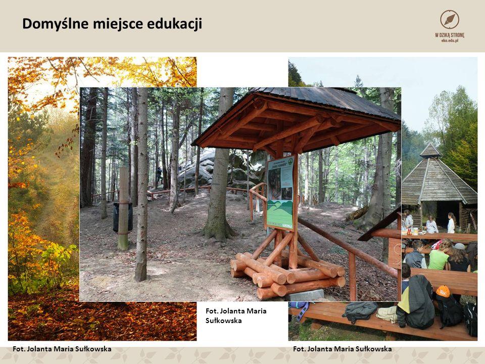 Domyślne miejsce edukacji Fot. Jolanta Maria Sułkowska