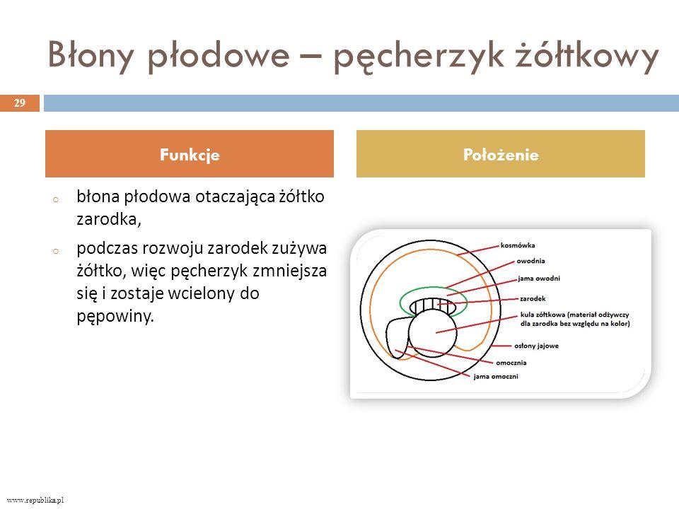 Błony płodowe – pęcherzyk żółtkowy o błona płodowa otaczająca żółtko zarodka, o podczas rozwoju zarodek zużywa żółtko, więc pęcherzyk zmniejsza się i zostaje wcielony do pępowiny.
