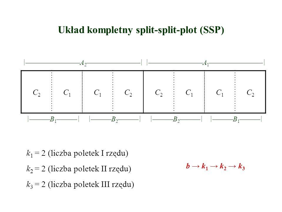 Układ kompletny split-split-plot (SSP) C2C2 C1C1 C1C1 C2C2 C2C2 C1C1 C1C1 C2C2   A 2     A 1     B 1    
