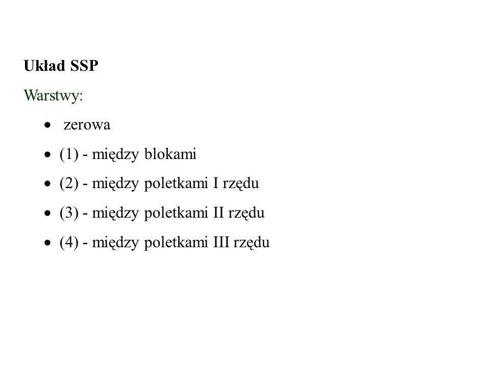 Układ SSP Warstwy:   zerowa   (1) - między blokami  (2) - między poletkami I rzędu  (3) - między poletkami II rzędu  (4) - między poletkami III