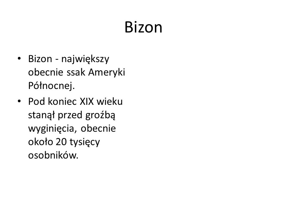 Bizon Bizon - największy obecnie ssak Ameryki Północnej. Pod koniec XIX wieku stanął przed groźbą wyginięcia, obecnie około 20 tysięcy osobników.