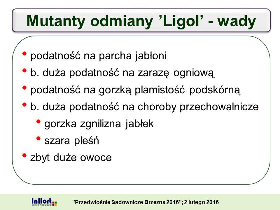 Mutanty odmiany 'Ligol' - wady Przedwiośnie Sadownicze Brzezna 2016 ; 2 lutego 2016 podatność na parcha jabłoni b.