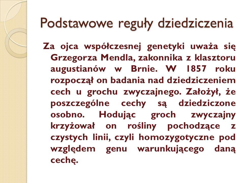 Podstawowe reguły dziedziczenia Za ojca współczesnej genetyki uważa się Grzegorza Mendla, zakonnika z klasztoru augustianów w Brnie. W 1857 roku rozpo