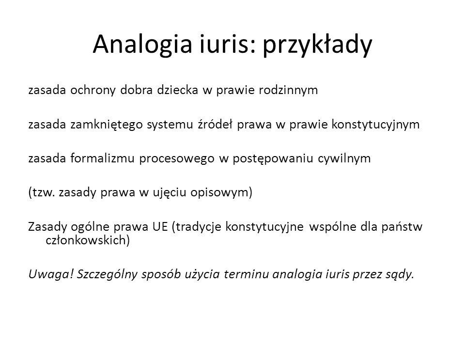 Analogia iuris: przykłady zasada ochrony dobra dziecka w prawie rodzinnym zasada zamkniętego systemu źródeł prawa w prawie konstytucyjnym zasada forma