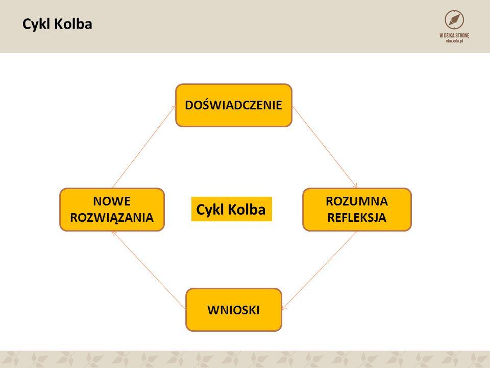 Cykl Kolba DOŚWIADCZENIE ROZUMNA REFLEKSJA WNIOSKI NOWE ROZWIĄZANIA Cykl Kolba