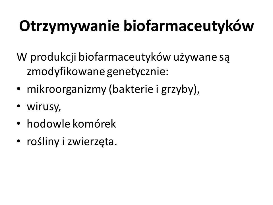 Otrzymywanie biofarmaceutyków W produkcji biofarmaceutyków używane są zmodyfikowane genetycznie: mikroorganizmy (bakterie i grzyby), wirusy, hodowle k