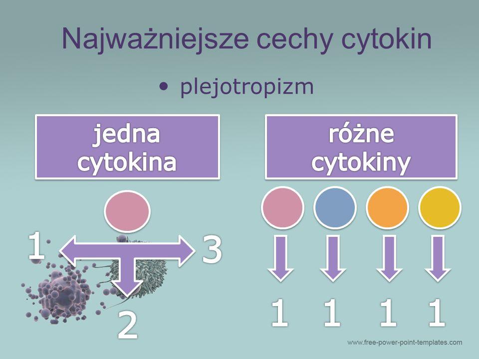 Najważniejsze cechy cytokin plejotropizm