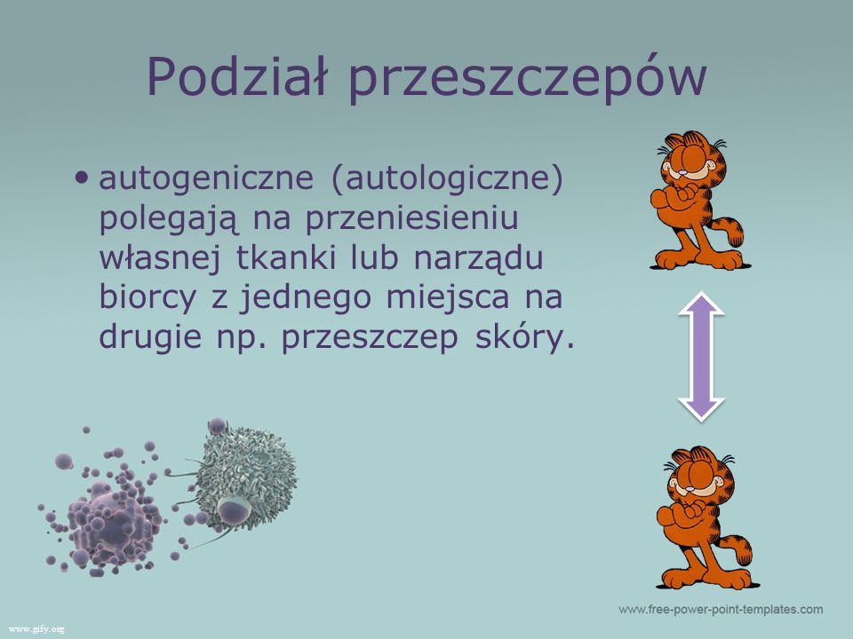 Podział przeszczepów autogeniczne (autologiczne) polegają na przeniesieniu własnej tkanki lub narządu biorcy z jednego miejsca na drugie np. przeszcze