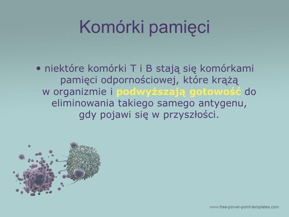 niektóre komórki T i B stają się komórkami pamięci odpornościowej, które krążą w organizmie i podwyższają gotowość do eliminowania takiego samego anty