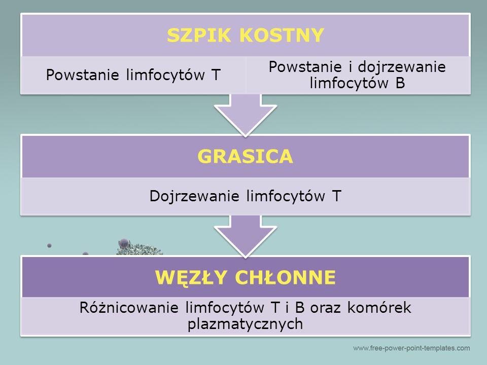 antagonizm działania Cytokina 1 Cytokina 2 Najważniejsze cechy cytokin