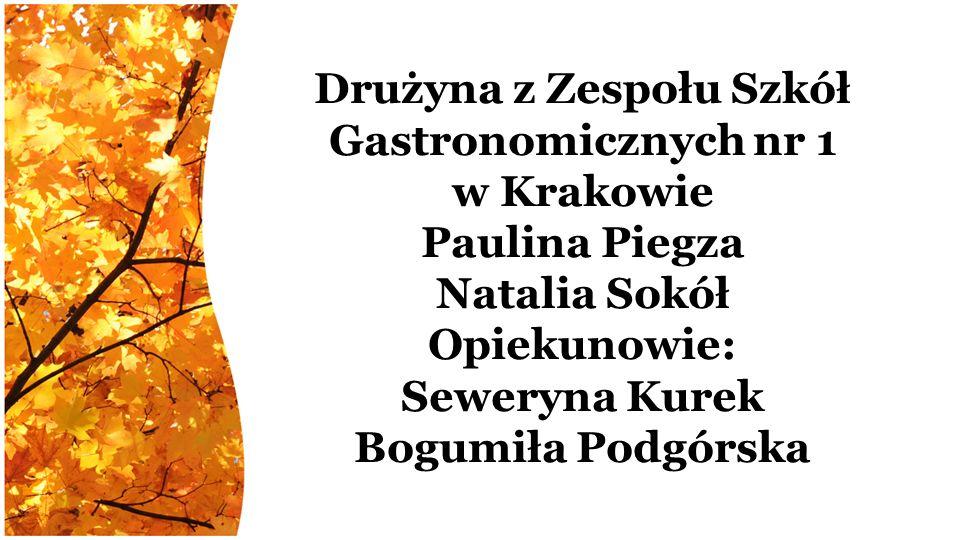 Drużyna z Zespołu Szkół Gastronomicznych nr 1 w Krakowie Paulina Piegza Natalia Sokół Opiekunowie: Seweryna Kurek Bogumiła Podgórska