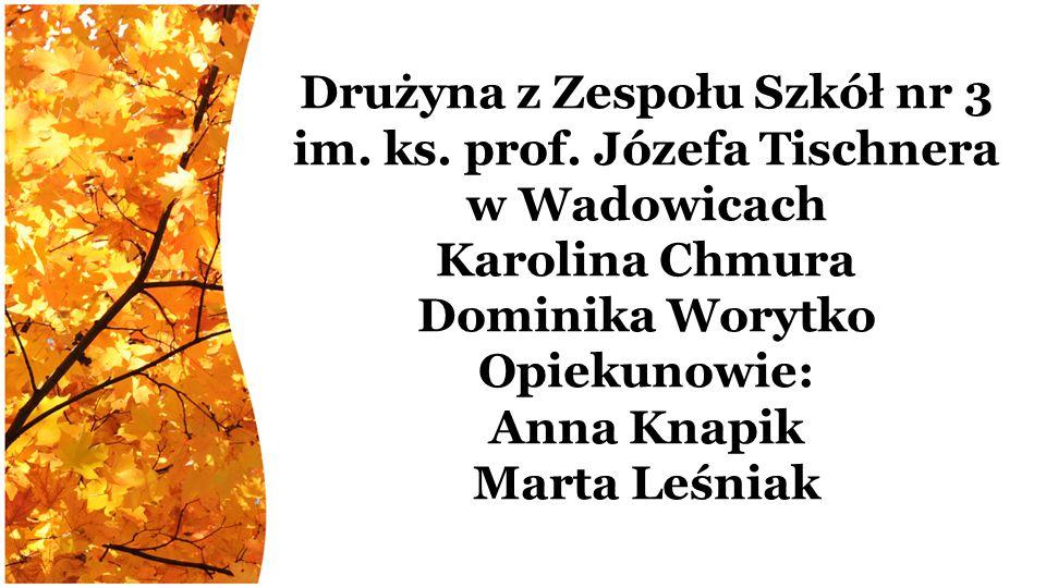 Drużyna z Zespołu Szkół nr 3 im. ks. prof.