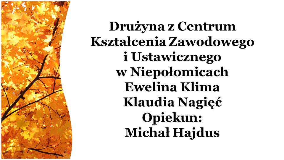 Drużyna z Centrum Kształcenia Zawodowego i Ustawicznego w Niepołomicach Ewelina Klima Klaudia Nagięć Opiekun: Michał Hajdus