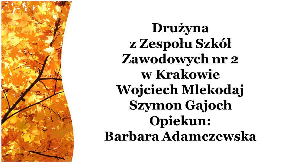Drużyna z Zespołu Szkół Zawodowych nr 2 w Krakowie Wojciech Mlekodaj Szymon Gajoch Opiekun: Barbara Adamczewska