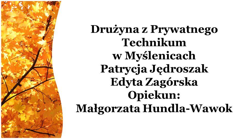 Drużyna z Prywatnego Technikum w Myślenicach Patrycja Jędroszak Edyta Zagórska Opiekun: Małgorzata Hundla-Wawok