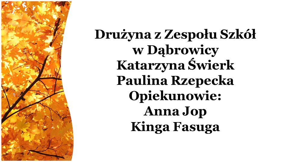 Drużyna z Zespołu Szkół w Dąbrowicy Katarzyna Świerk Paulina Rzepecka Opiekunowie: Anna Jop Kinga Fasuga