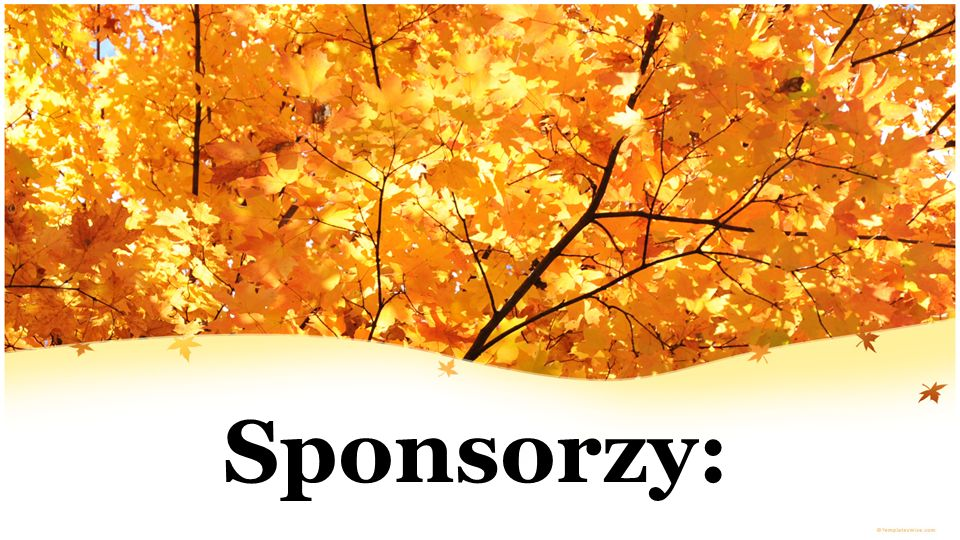 Sponsorzy: