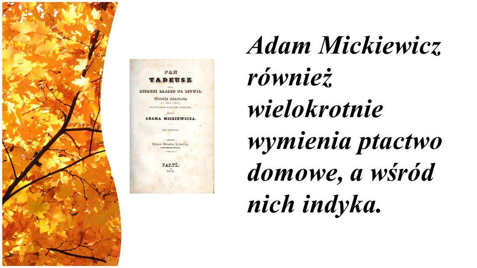 Adam Mickiewicz również wielokrotnie wymienia ptactwo domowe, a wśród nich indyka.
