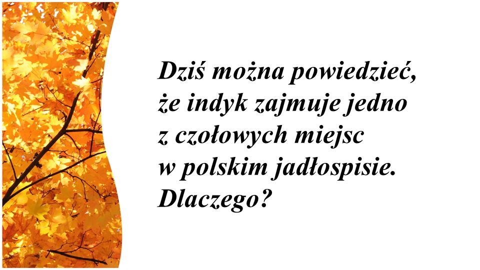 Dziś można powiedzieć, że indyk zajmuje jedno z czołowych miejsc w polskim jadłospisie. Dlaczego