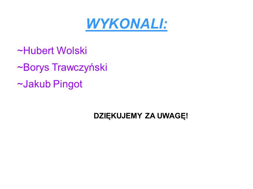 WYKONALI: ~Hubert Wolski ~Borys Trawczyński ~Jakub Pingot DZIĘKUJEMY ZA UWAGĘ!