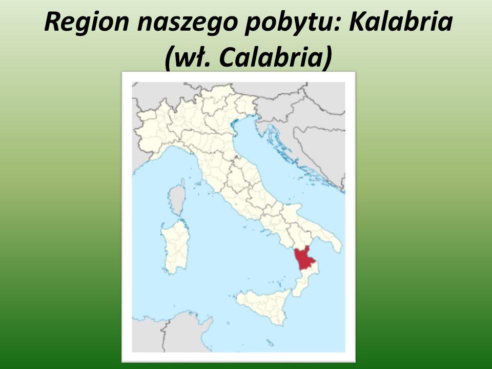 Oprócz pracy mieliśmy czas wolny który wykorzystaliśmy na zwiedzanie Włoch, zwiedziliśmy m.in.