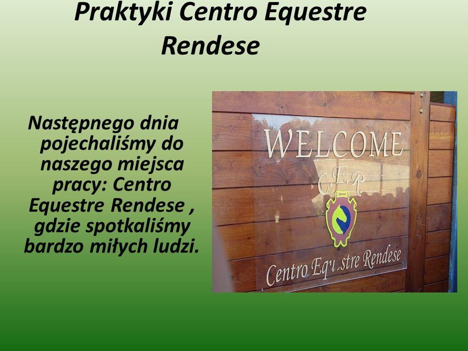 Praktyki Centro Equestre Rendese Następnego dnia pojechaliśmy do naszego miejsca pracy: Centro Equestre Rendese, gdzie spotkaliśmy bardzo miłych ludzi.