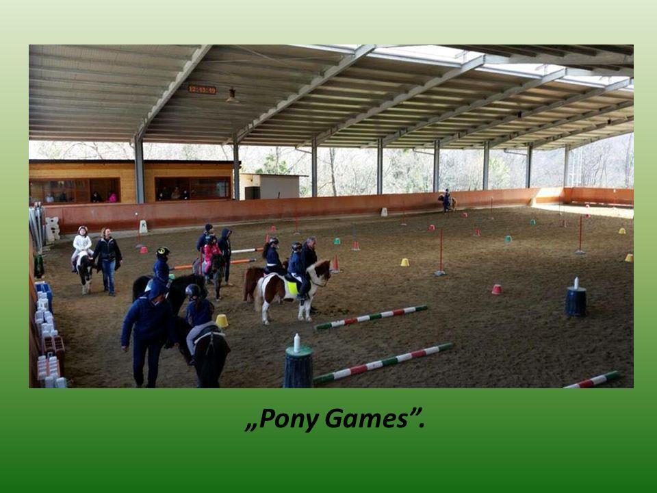 """""""Pony Games ."""