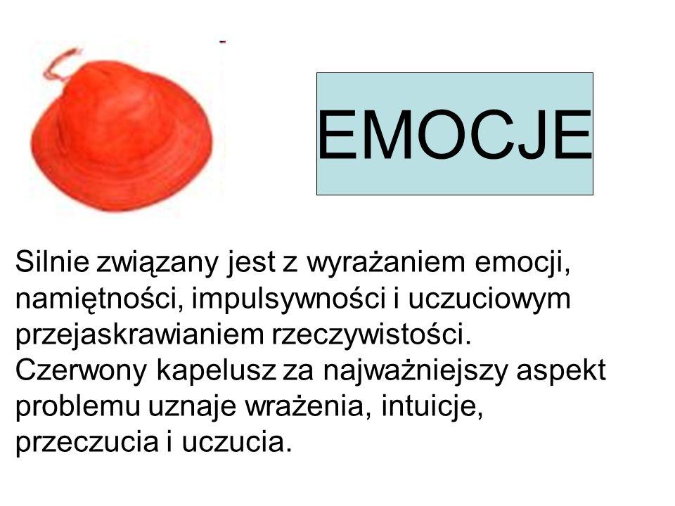 OBIEKTYWIZM Jest całkowitym przeciwieństwem czerwonego, wskazuje na czystość, sterylność, neutralność i logikę.