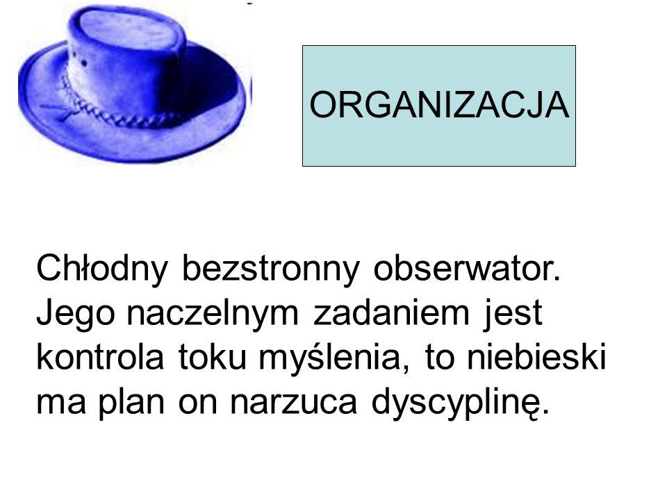 ORGANIZACJA Chłodny bezstronny obserwator. Jego naczelnym zadaniem jest kontrola toku myślenia, to niebieski ma plan on narzuca dyscyplinę.
