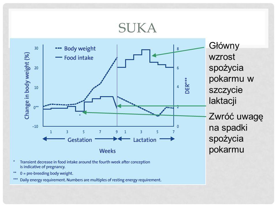 SUKA Główny wzrost spożycia pokarmu w szczycie laktacji Zwróć uwagę na spadki spożycia pokarmu
