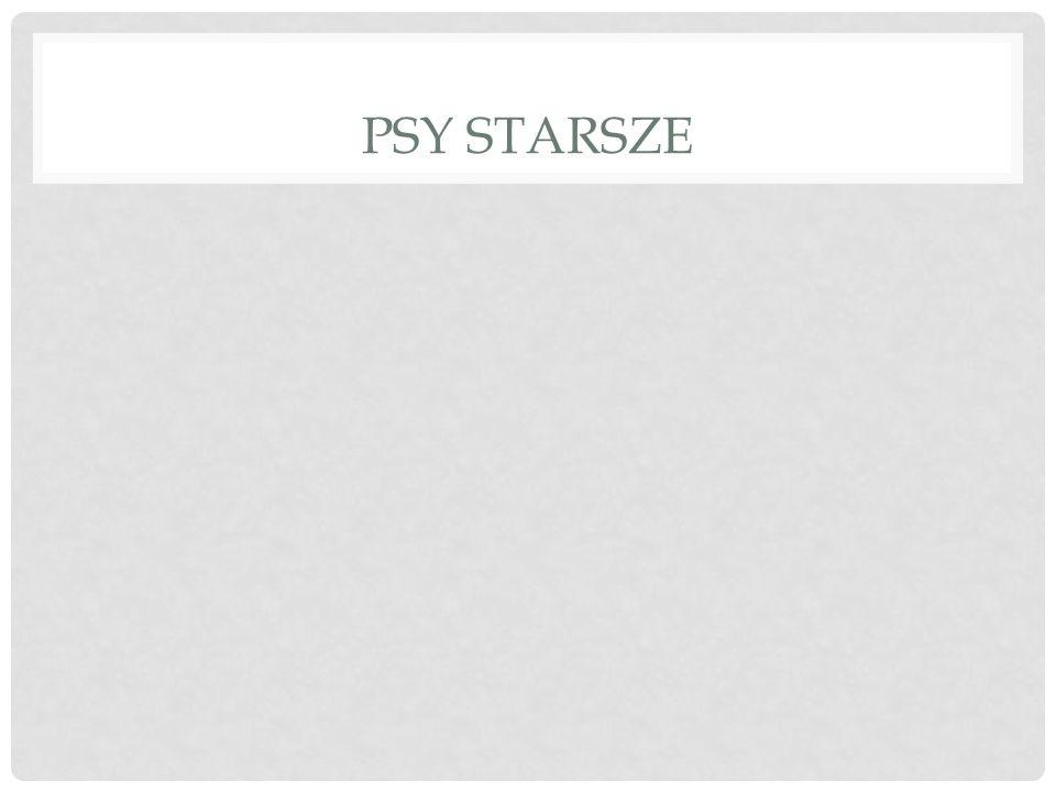 PSY STARSZE
