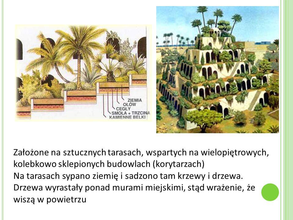 Założone na sztucznych tarasach, wspartych na wielopiętrowych, kolebkowo sklepionych budowlach (korytarzach) Na tarasach sypano ziemię i sadzono tam k