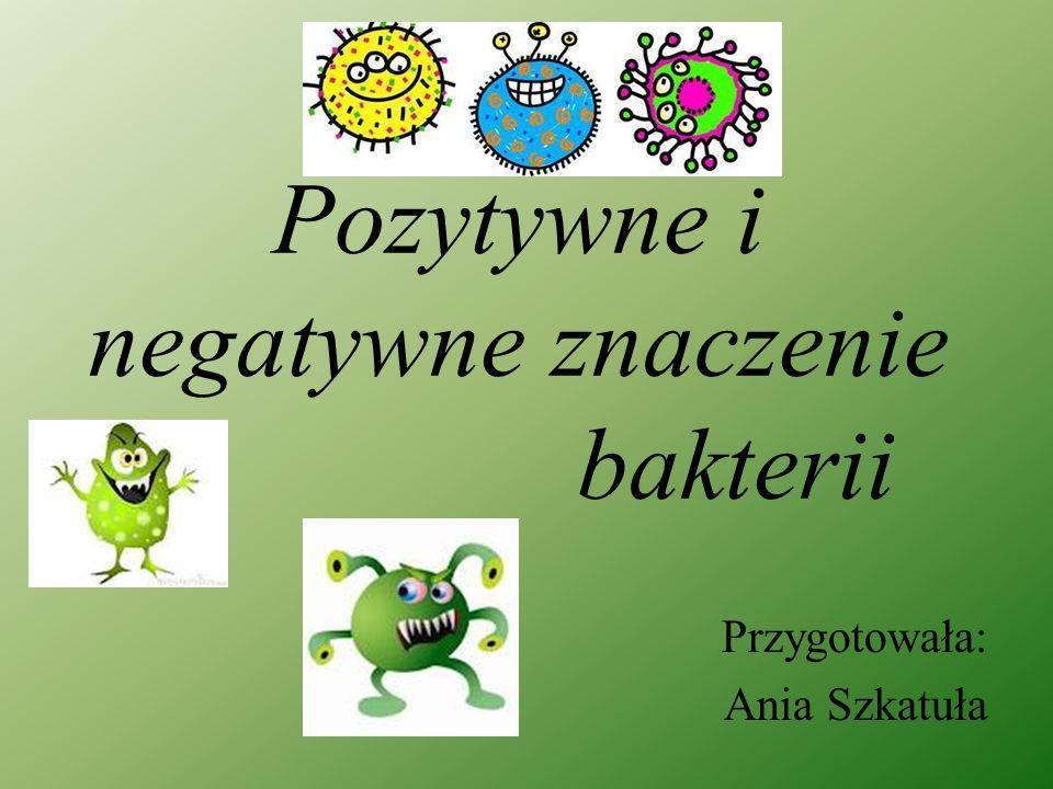 Pozytywne i negatywne znaczenie bakterii Przygotowała: Ania Szkatuła