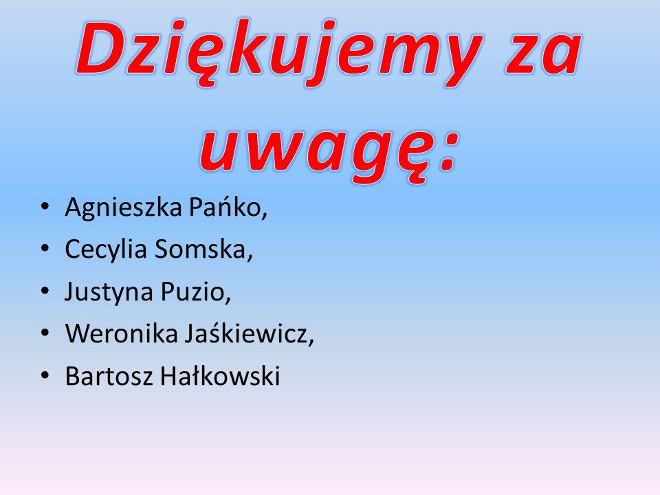 Agnieszka Pańko, Cecylia Somska, Justyna Puzio, Weronika Jaśkiewicz, Bartosz Hałkowski