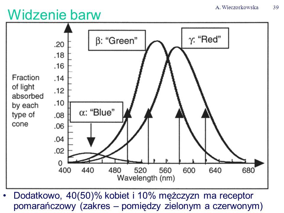 A. Wieczorkowska39 Widzenie barw Dodatkowo, 40(50)% kobiet i 10% mężczyzn ma receptor pomarańczowy (zakres – pomiędzy zielonym a czerwonym)