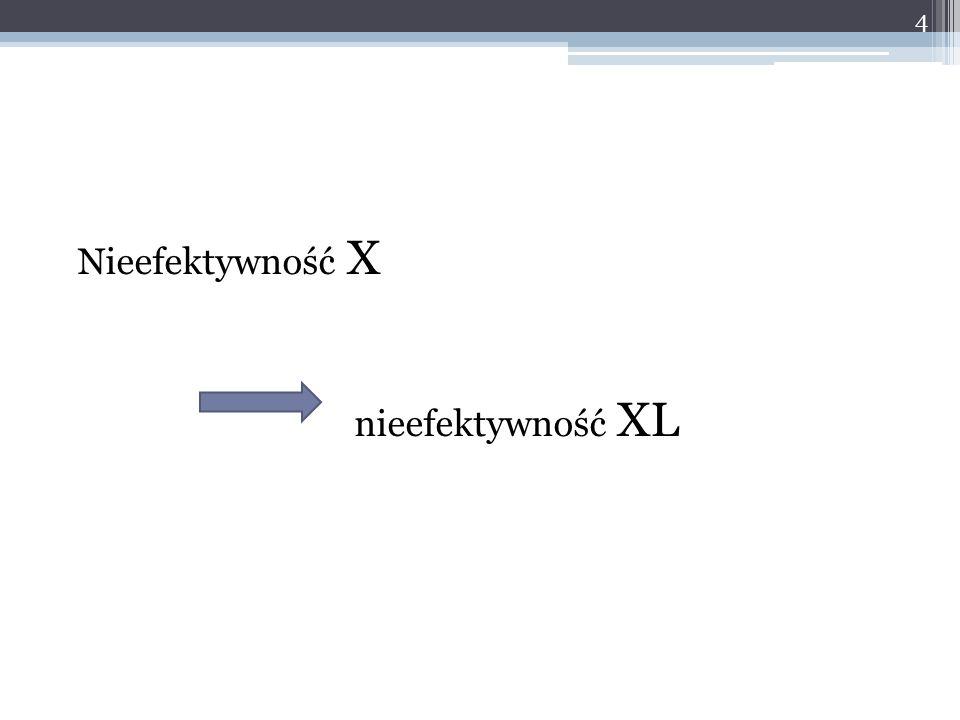 Nieefektywność X nieefektywność XL 4
