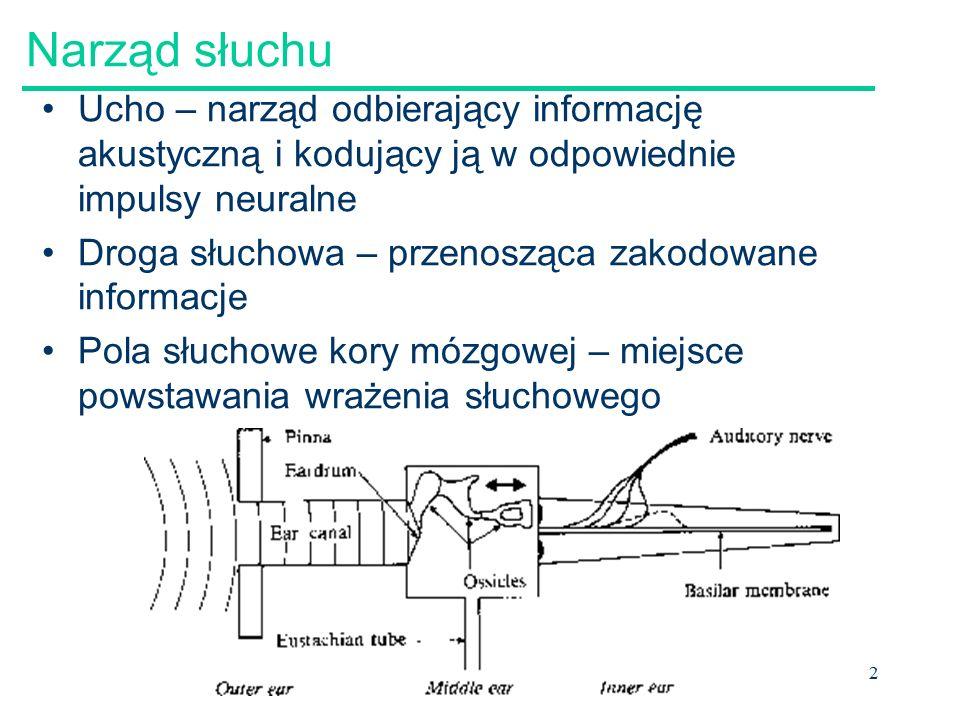 2 Narząd słuchu Ucho – narząd odbierający informację akustyczną i kodujący ją w odpowiednie impulsy neuralne Droga słuchowa – przenosząca zakodowane informacje Pola słuchowe kory mózgowej – miejsce powstawania wrażenia słuchowego