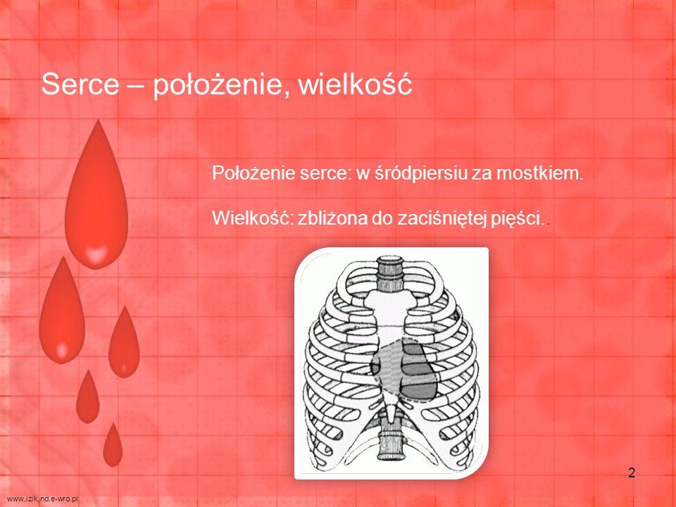 Położenie serce: w śródpiersiu za mostkiem. Wielkość: zbliżona do zaciśniętej pięści.. Serce – położenie, wielkość www.izik.nd.e-wro.pl 2
